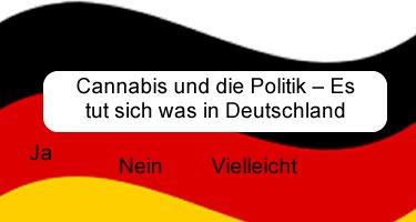 Cannabis und die Politik Es tut sich was in Deutschland