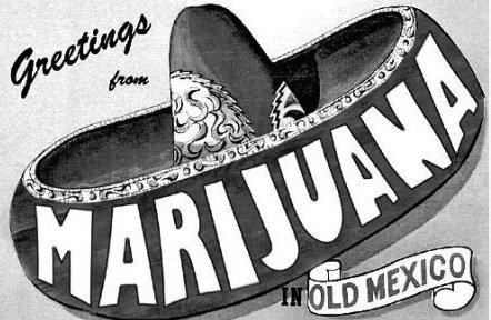 Weniger tolerant als gedacht: Mexikaner sind überwiegend gegen freien Cannabis-Konsum