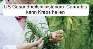 Gesundheitsministerium: Cannabis heilt Krebs