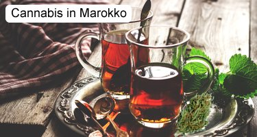 Cannabis in Marokko