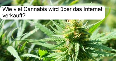 Cannabis über das Internet kaufen