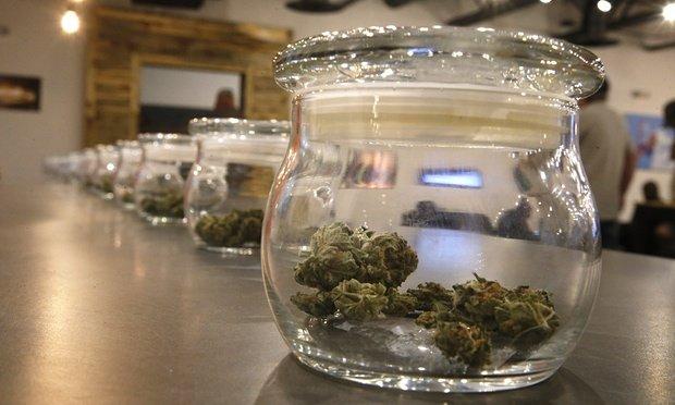 Legalisierung von Cannabis : Der verpasste Milliarden-Cash-Flow