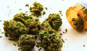 Gesundheit und Cannabis