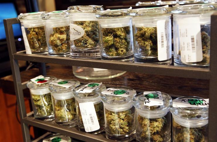 Cannabis Legalisierung würde dem Schwarzmarkt die Basis nehmen