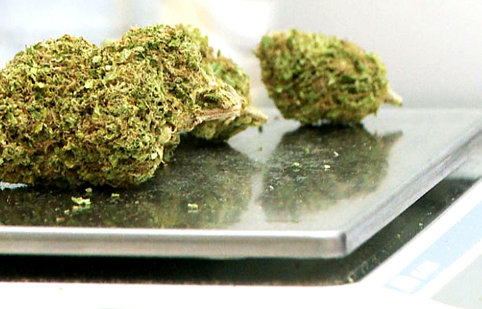Küchen- oder Feinwaage für Cannabis