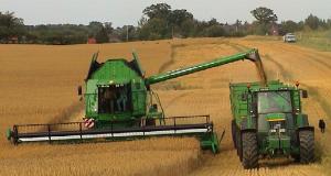 Hanf-Landwirtschaft
