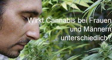 Wie wirkt Cannabis