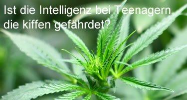 Ist die Intelligenz bei Teenagern die kiffen gefährdet?
