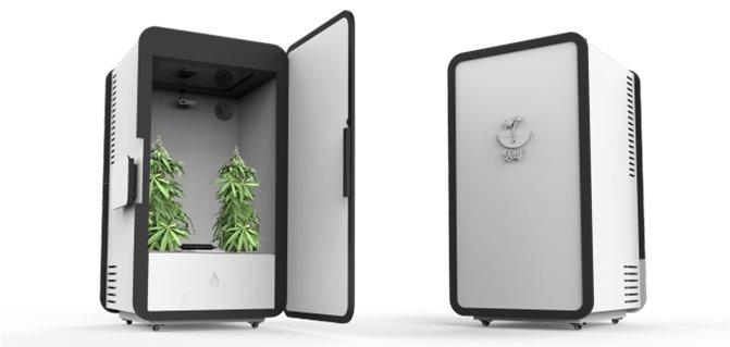Cannabis Anbau voll automatisiert und app gesteuert: