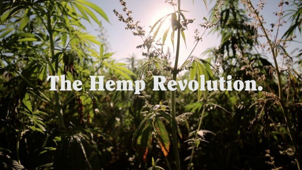 Hanf Revolution