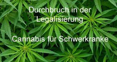 Legalisierung von Cannabis für Schwerkranke