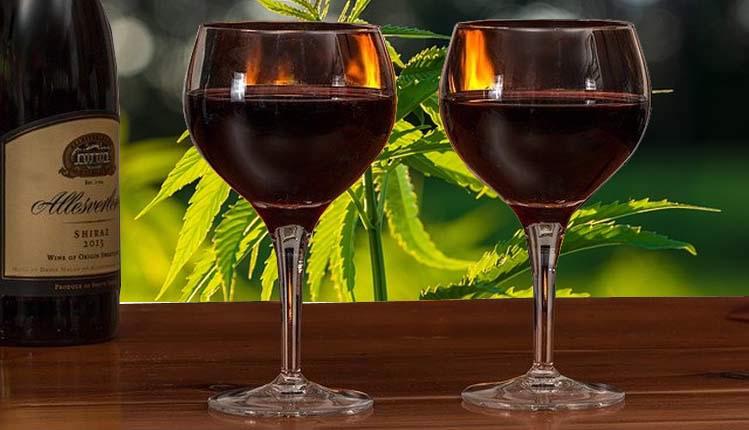 CBD-Wein- Wie er schmeckt und wie man ihn selbst macht