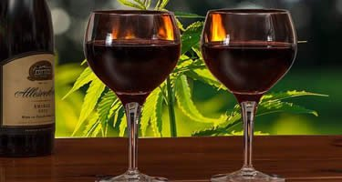 CBD im Wein