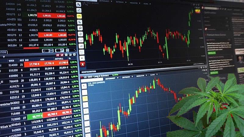 Lohnt sich der Kauf von Cannabis-Aktien? Der Markt boomt und immer mehr Firmen komen dazu. Was Sie wissen sollten beim Kauf der Aktien.