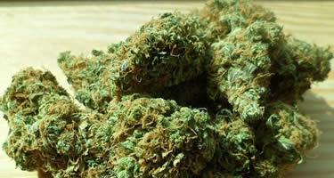 Rauchen vs Verdampfen vs Essen: Was ist die beste Art, Cannabis zu konsumieren