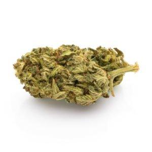 CBD Blüten Premium Gorilla Glue 6g